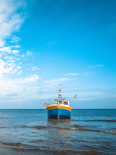 Contact Tampa Bay Fishing Charters