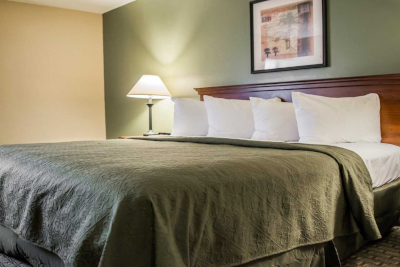 Places to Stay in Tampa, Florida