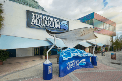 Things to See in Tampa Bay Florida